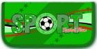 Пенал школьный  Феникс 1 отдел. Спорт (узкий) Цена: 280 – 50% = 140 рублей